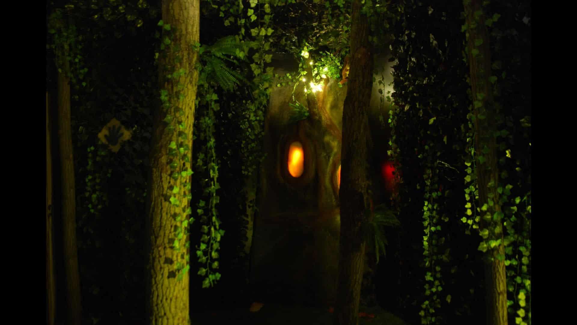 Forêt enchantée illustrant la salle Magie Noire du défi des ducs à Dijon