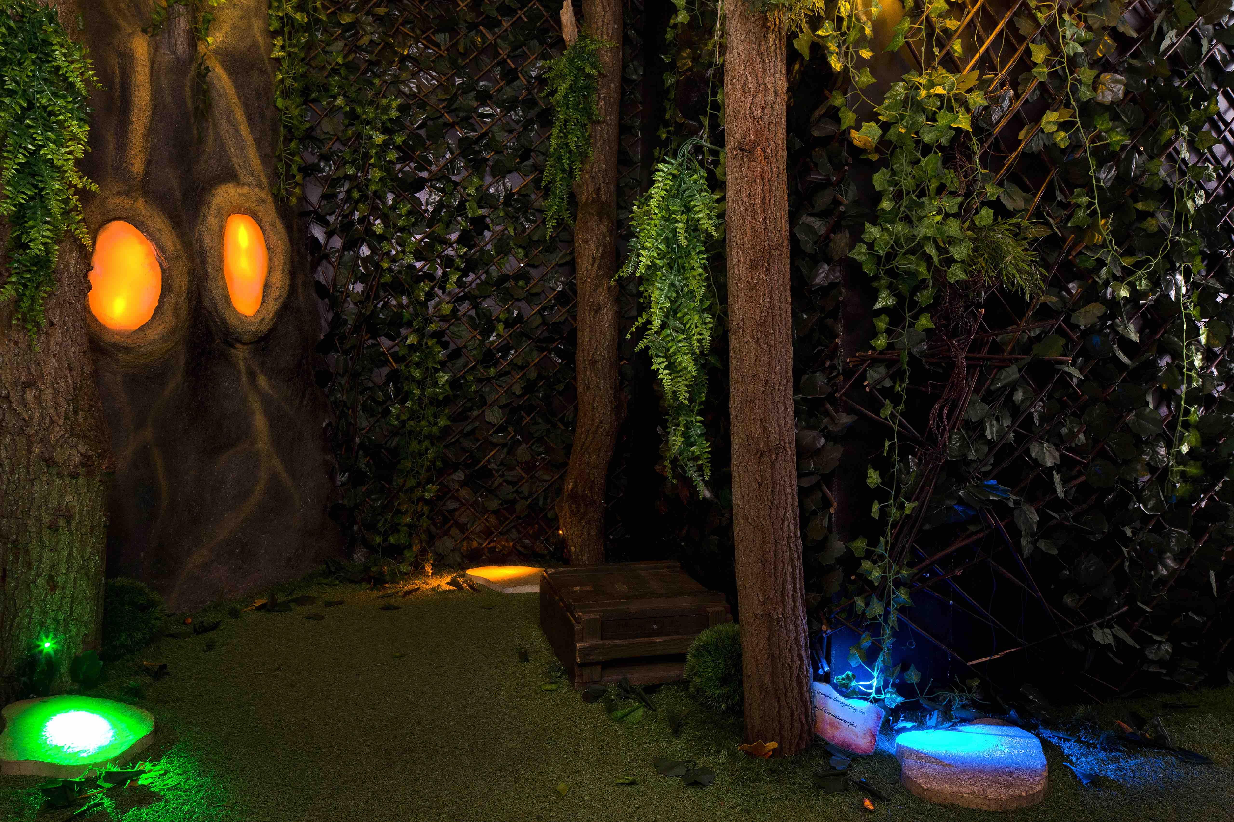 Image de la forêt de la salle Magie Noire de l'escape game le défi des ducs à Dijon